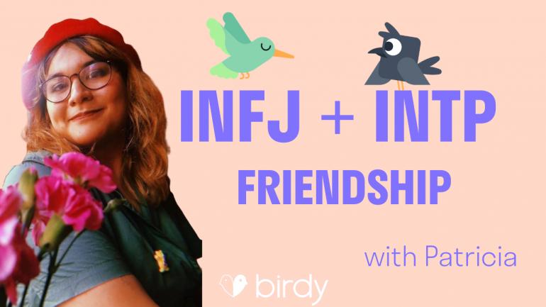 INFJ + INTP Friendship